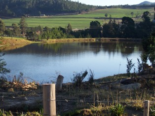 Property & Real Estate Sales - Farm in Garden Route, GEORGE, GEORGE, South Africa